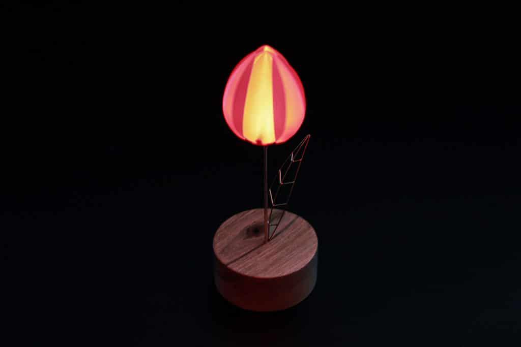 Red Floower lit
